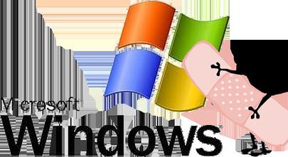 Google nagradio hakere sa 5,000 dolara zbog baga u Windows-u